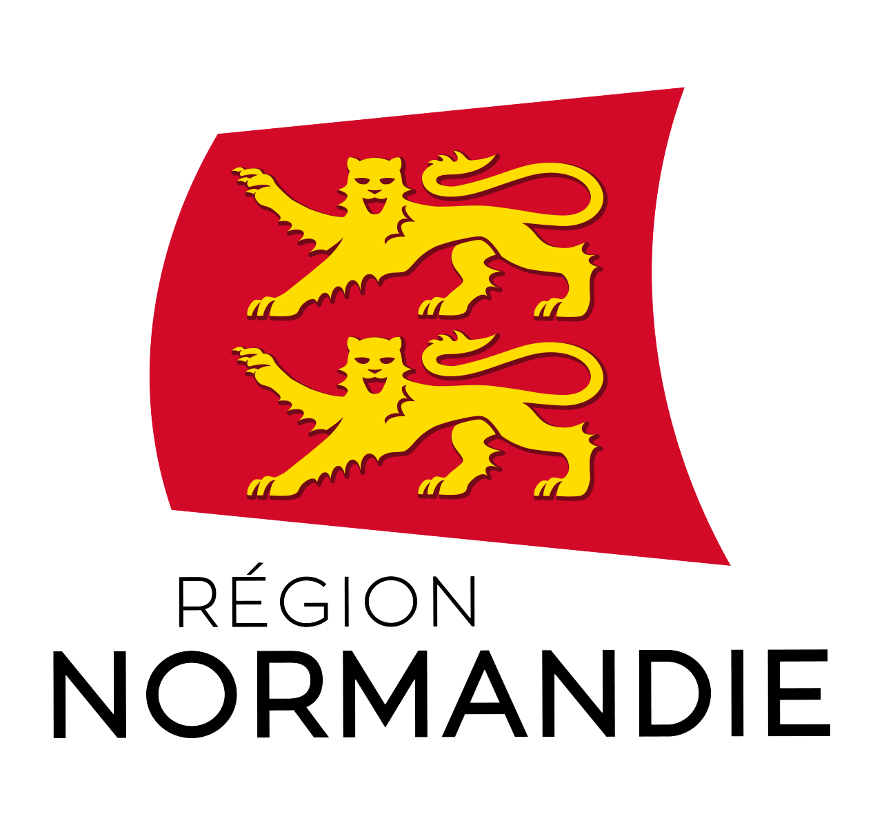 logo-REGION-TRANSPARENT